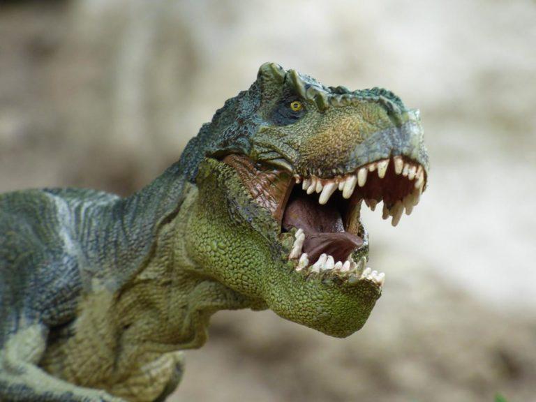 Poznaj życie dinozaurów w wyjątkowym parku